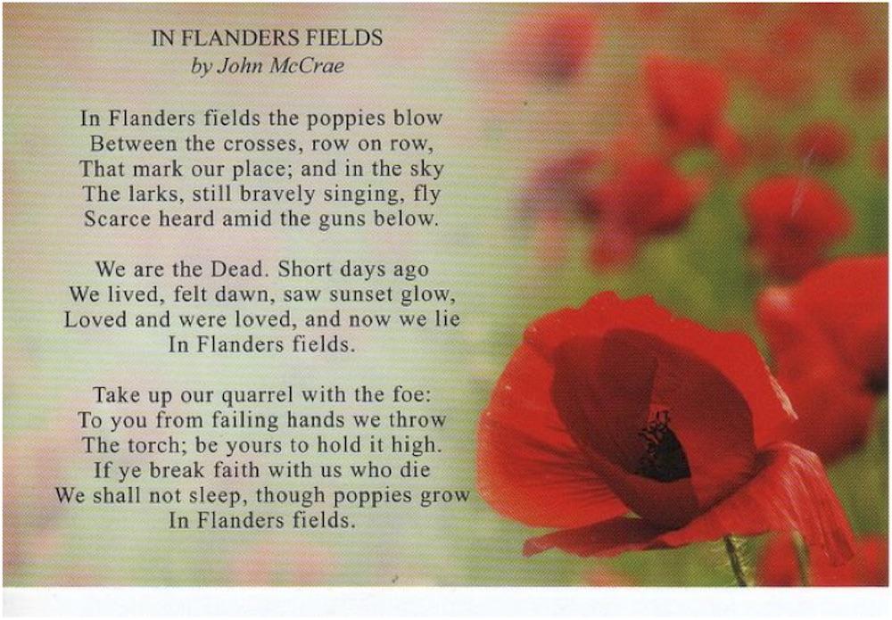 flanders-field-poem.jpg